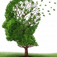 Dementia cases 'set to treble worldwide' by 2050