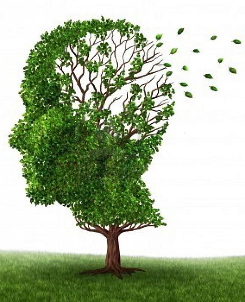 Dementia care in Mallorca