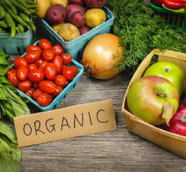 Organic Food in Mallorca