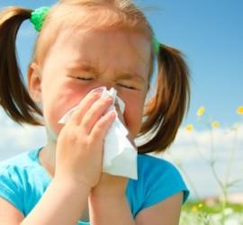 Allergy Advice from Mallorca